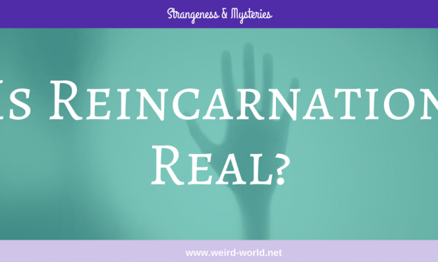 Is Reincarnation Real?