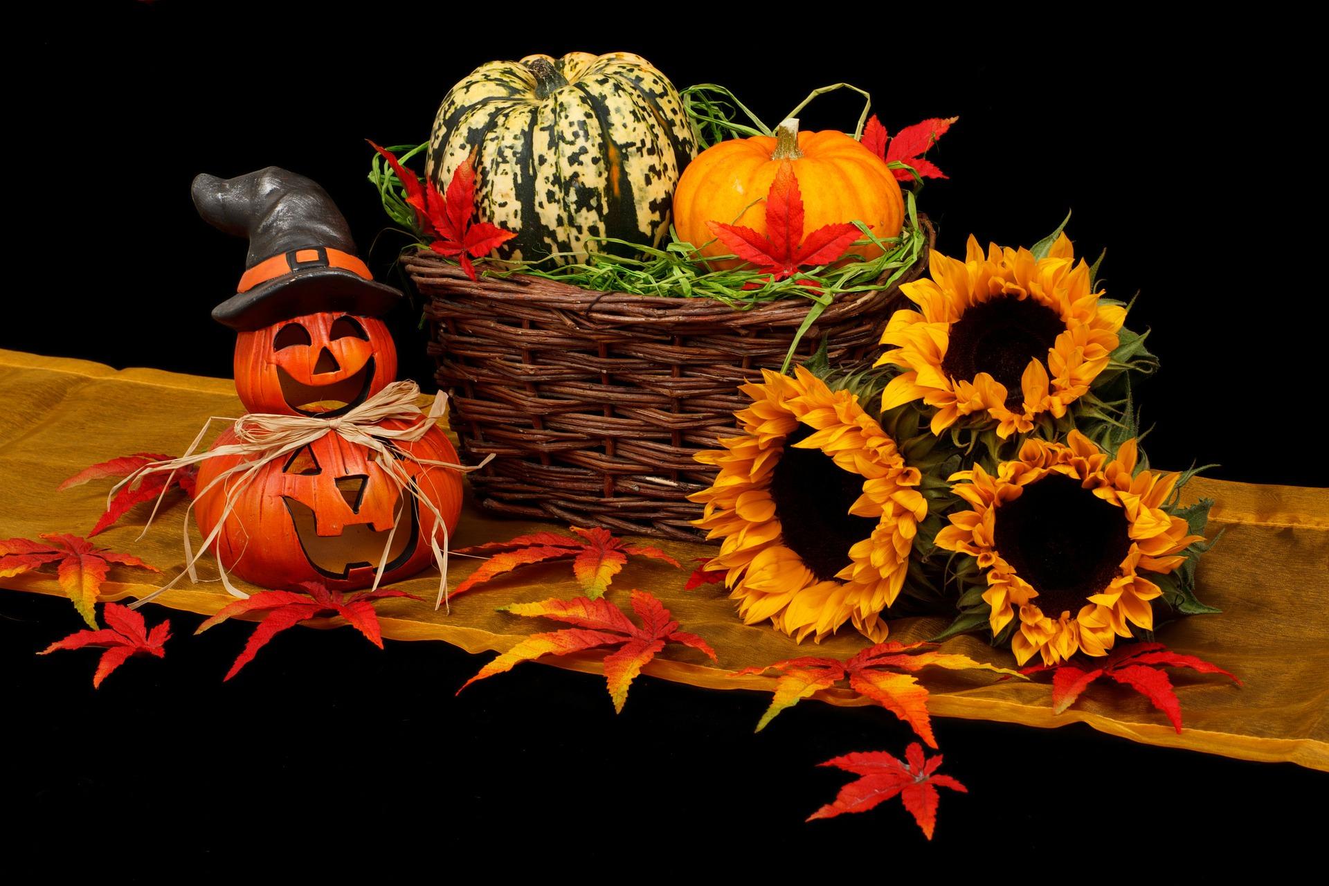autumn-20461_1920