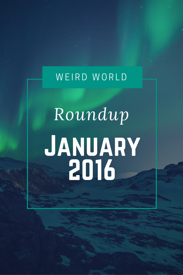 Weird World Roundup January 2016